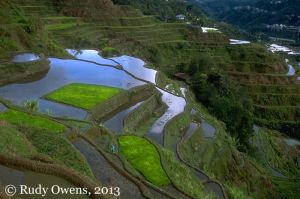 Banaue's World Famous Rice Terraces