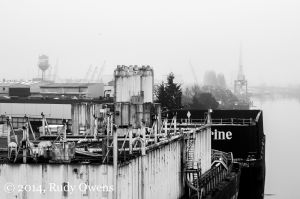Looking South On the Duwamish River