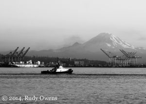 Elliott Bay and Mt. Rainier, January 2014