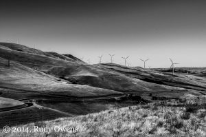 Windfarm, Klickitat County, September 2013